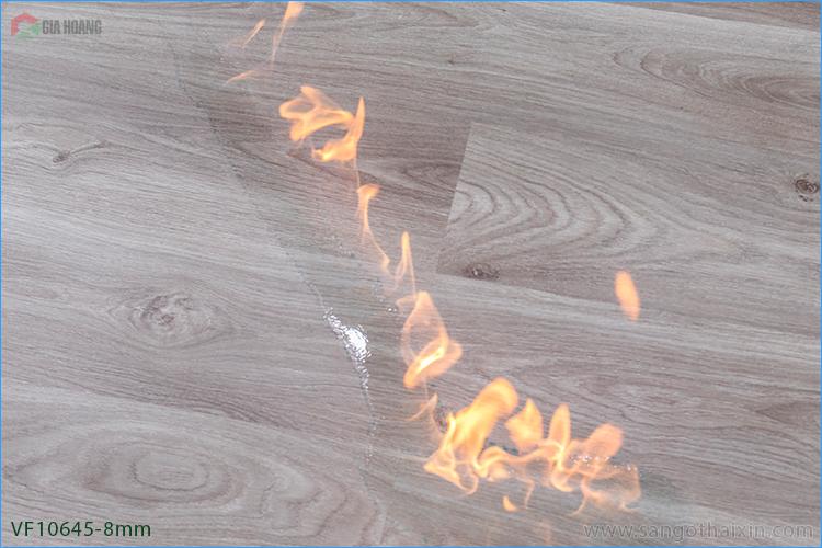 Bài test sàn gỗ chịu nhiêt của Thaixin Flooring